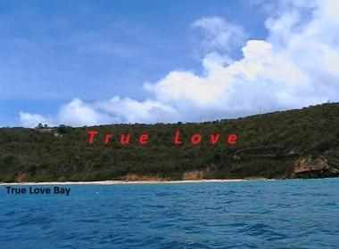 True Love 2